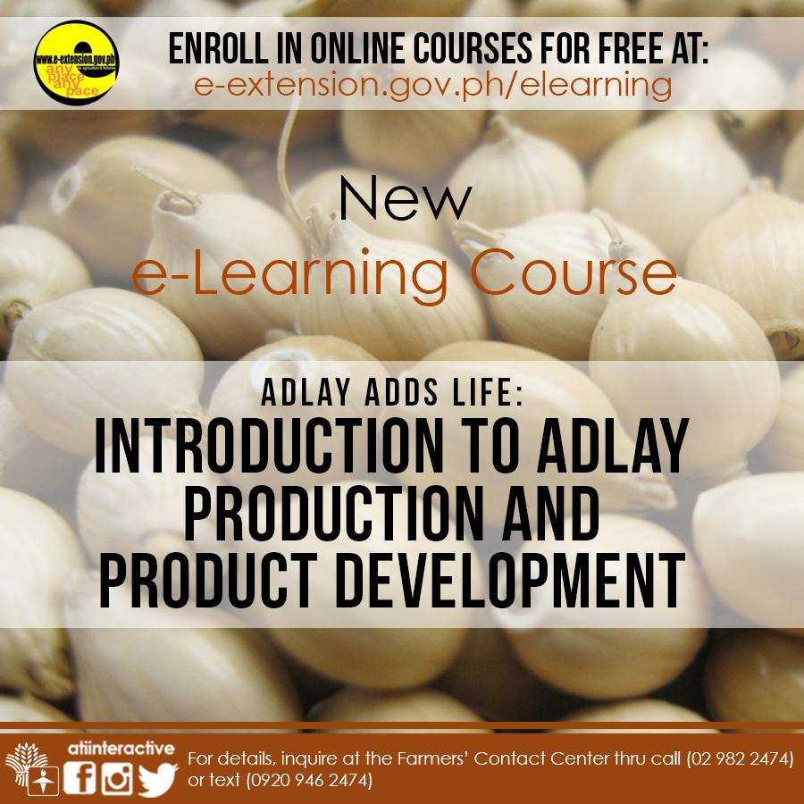 Adlay