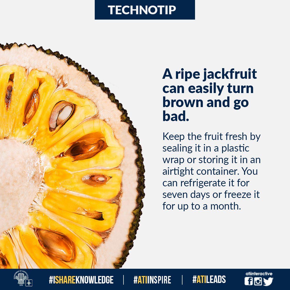 ripe jackfruit technotip