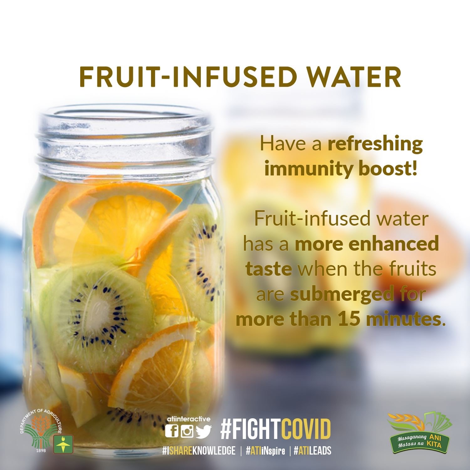 fruit-infused water 2